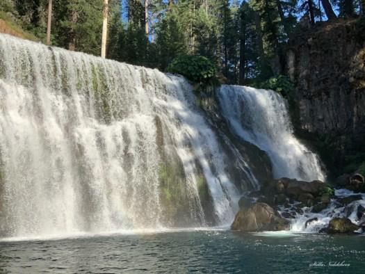 Majestueuse cascade dans la forêt californienne