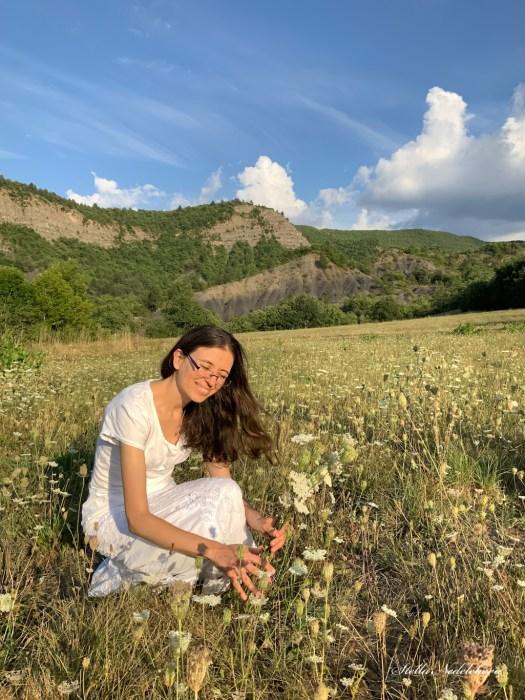 Cueillette de fleurs au coucher du soleil