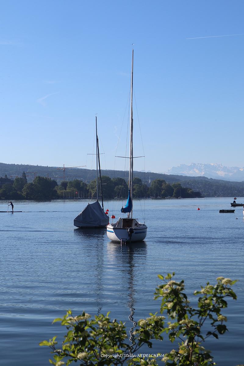 le lac de Zürich - harmonie