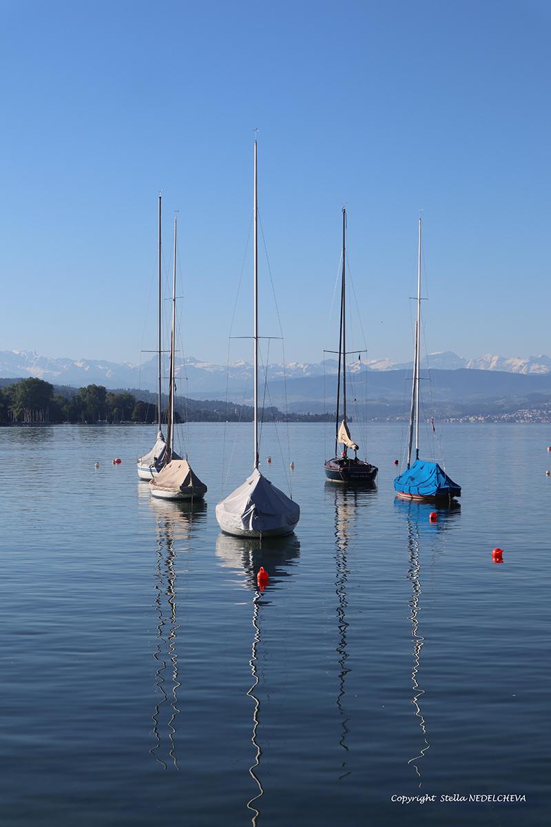 vue sur le lac de Zürich