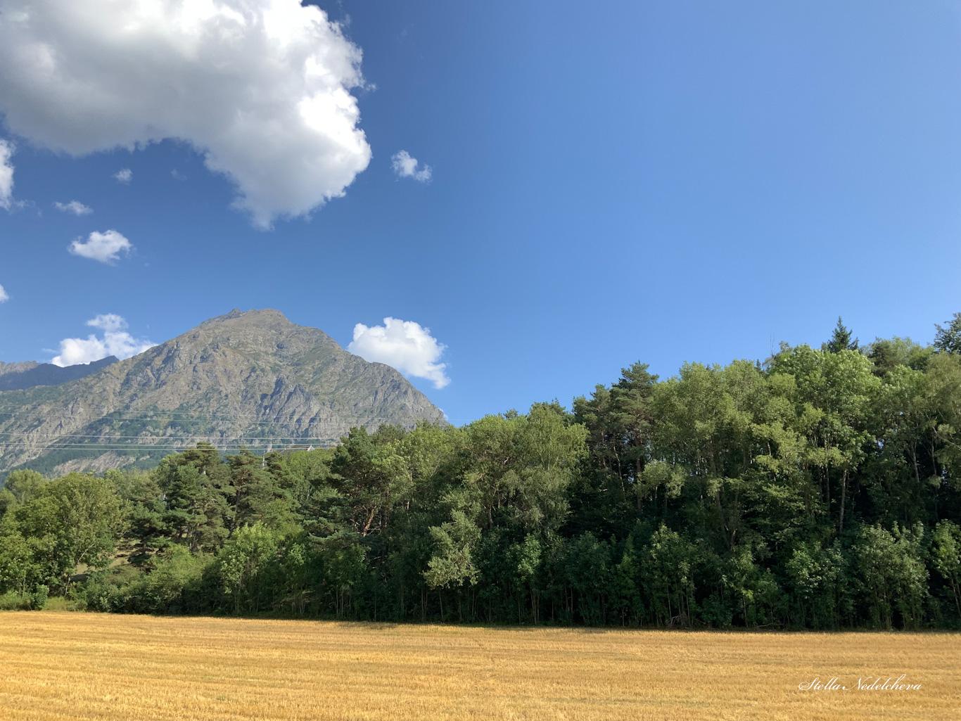 Paysage - montagne, arbres et champs de blé