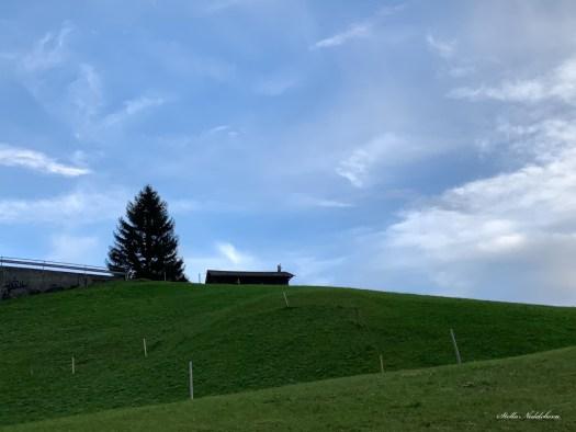Paysage dans les Alpes