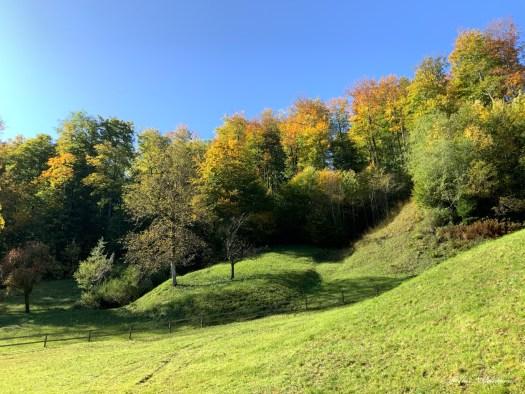 Paysage d'automne dans les Alpes Suisses