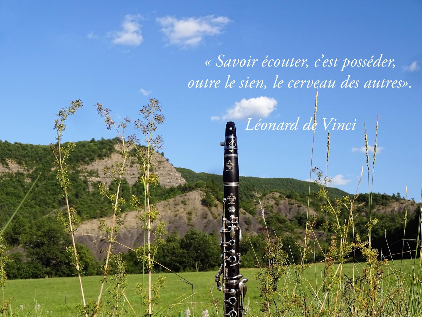Clarinette dans la nature