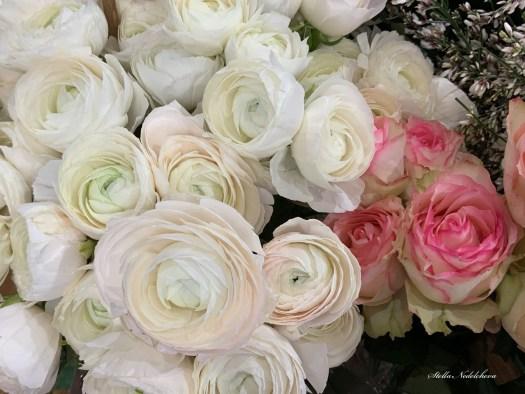 Bouquet de roses - fraîcheur et tendresse