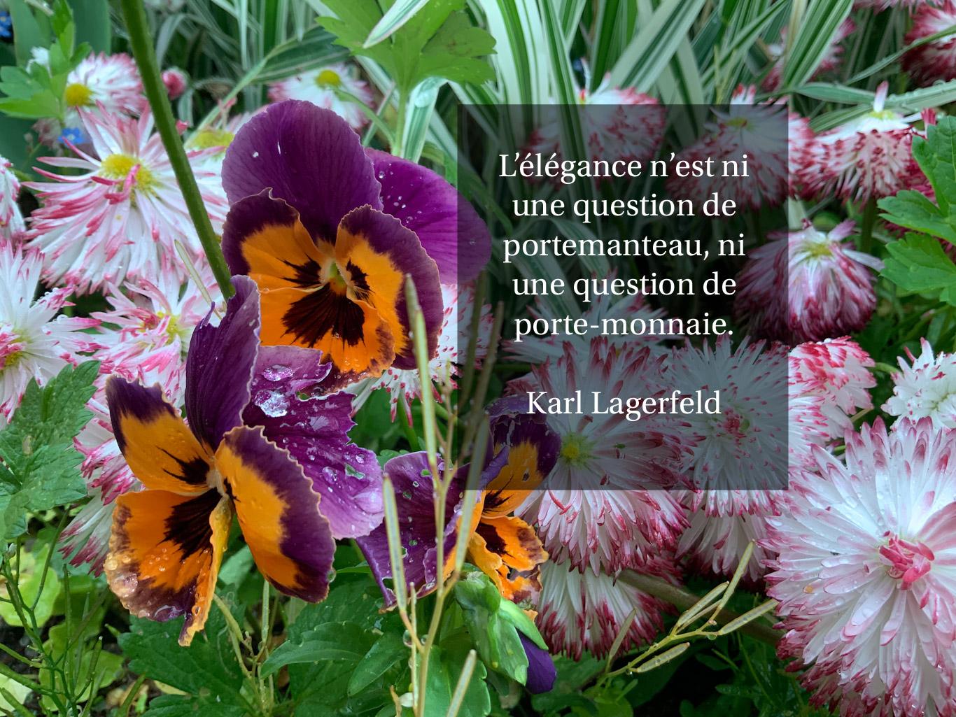 Citation - élégance