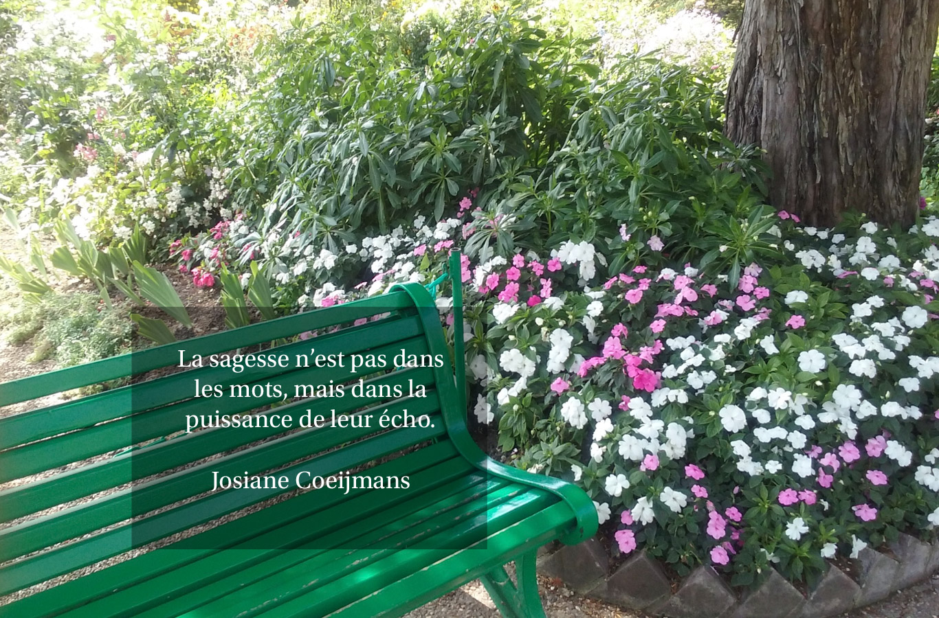 Citation - sagesse