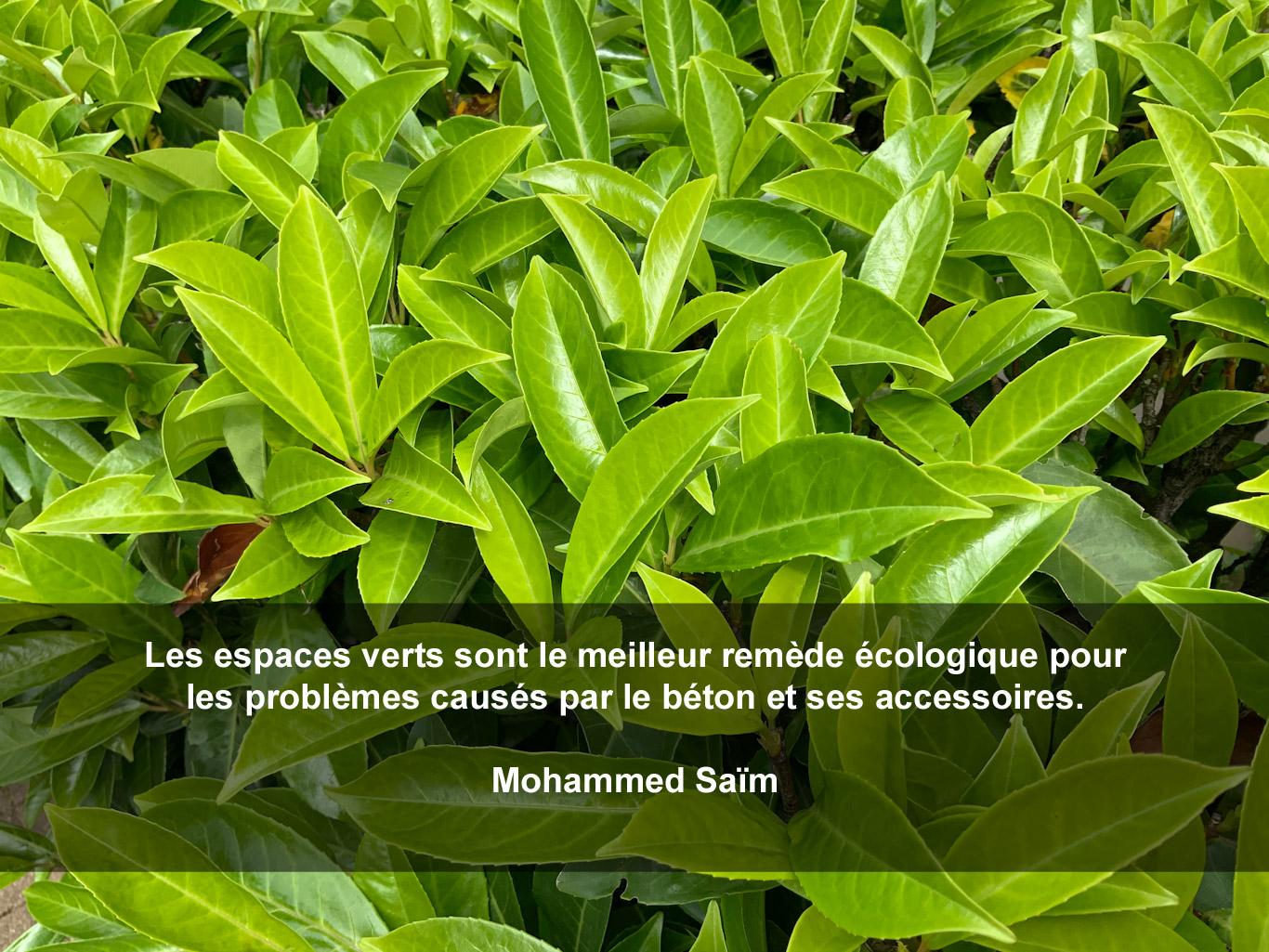 Citation - remède écologique