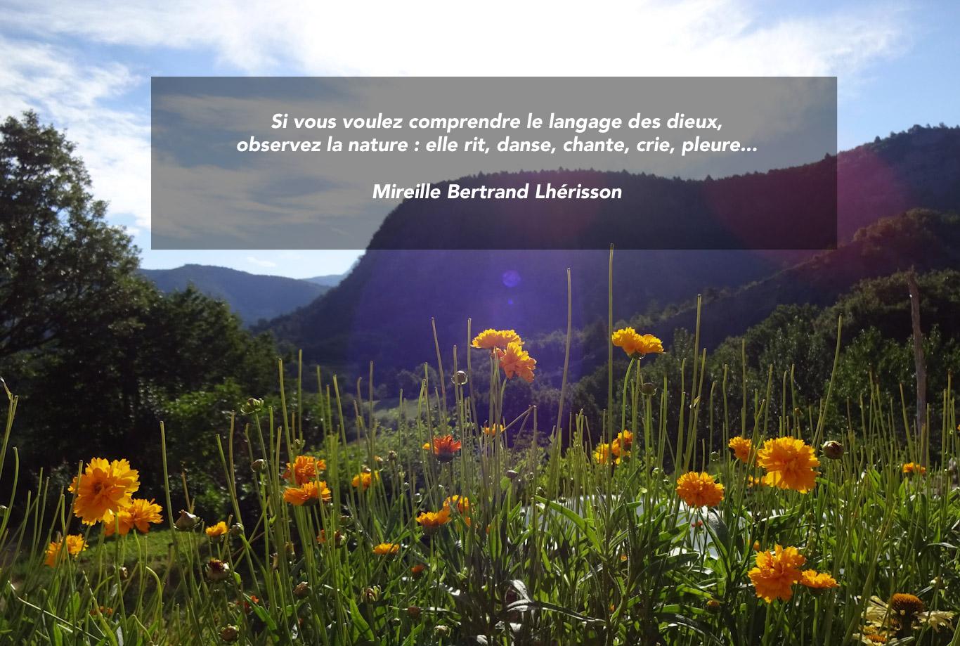 Citation - nature