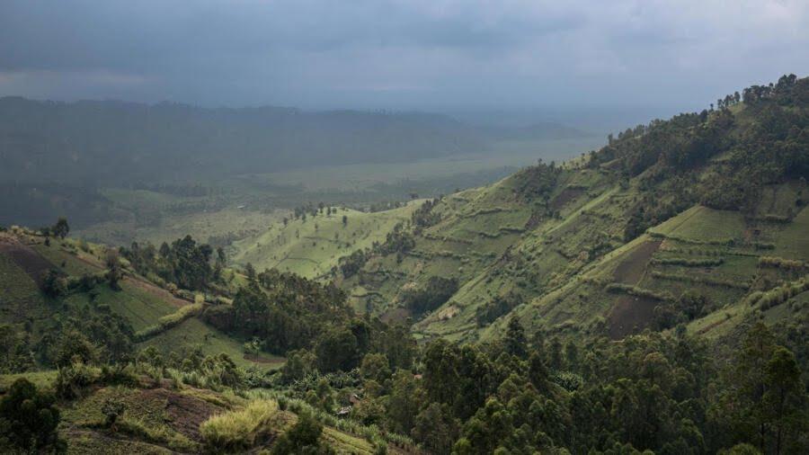 Le Parc national des Virunga photographié le 28 septembre 2019.