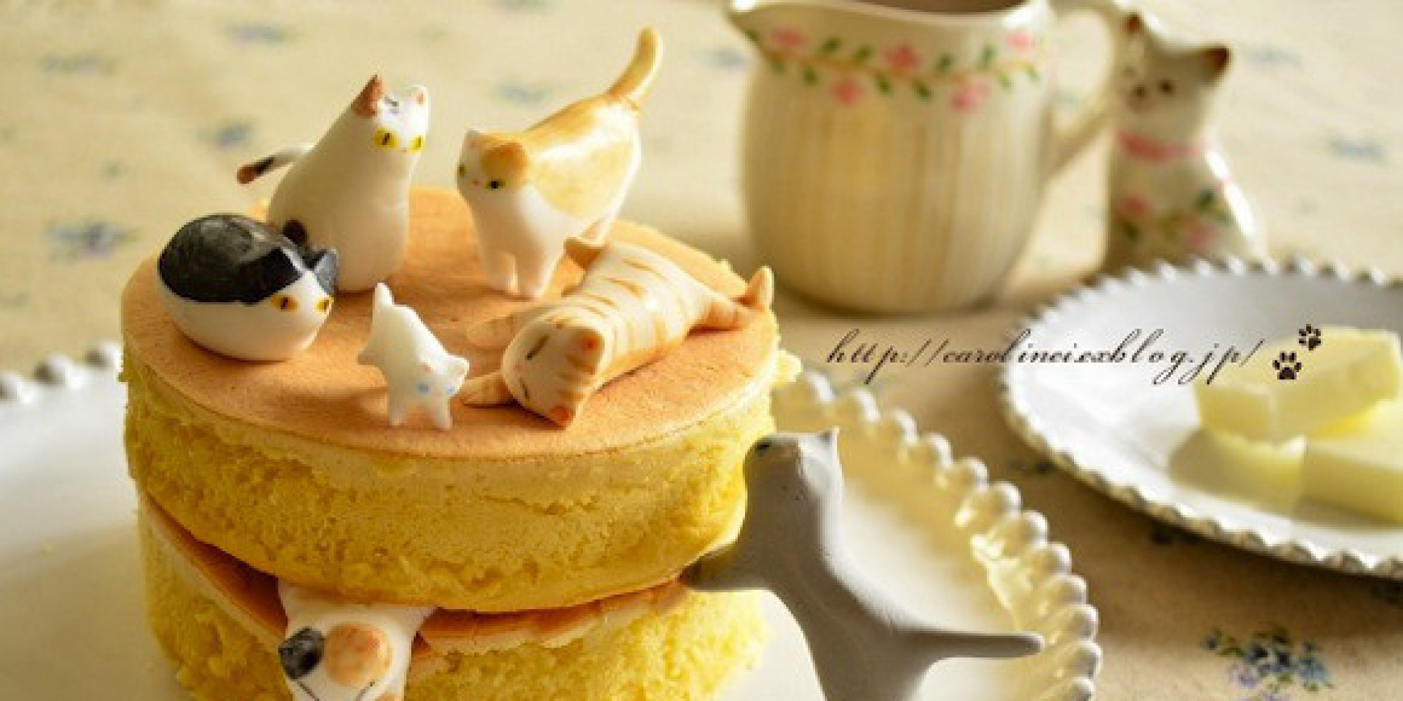 Cat Cake Recipe The Best Cake Of 2018