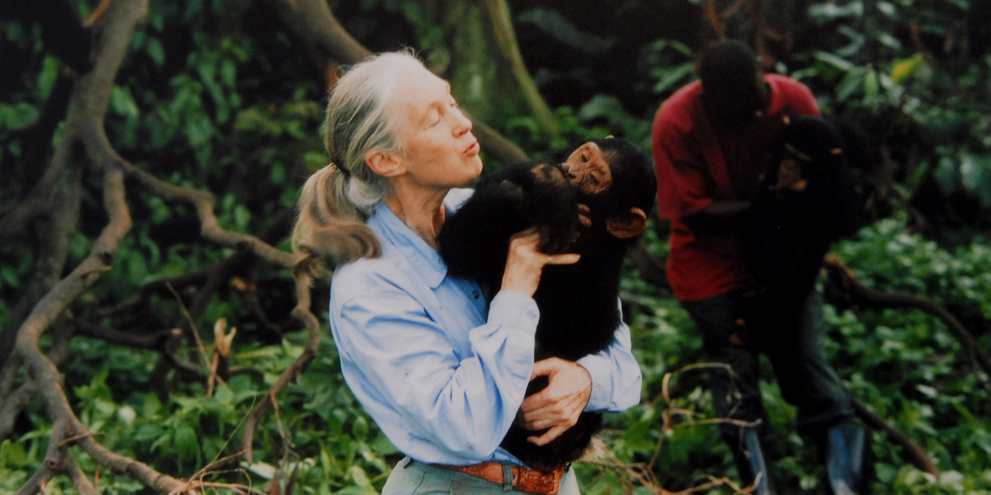 Seeds Of Intimacy The Jane Goodall Effect