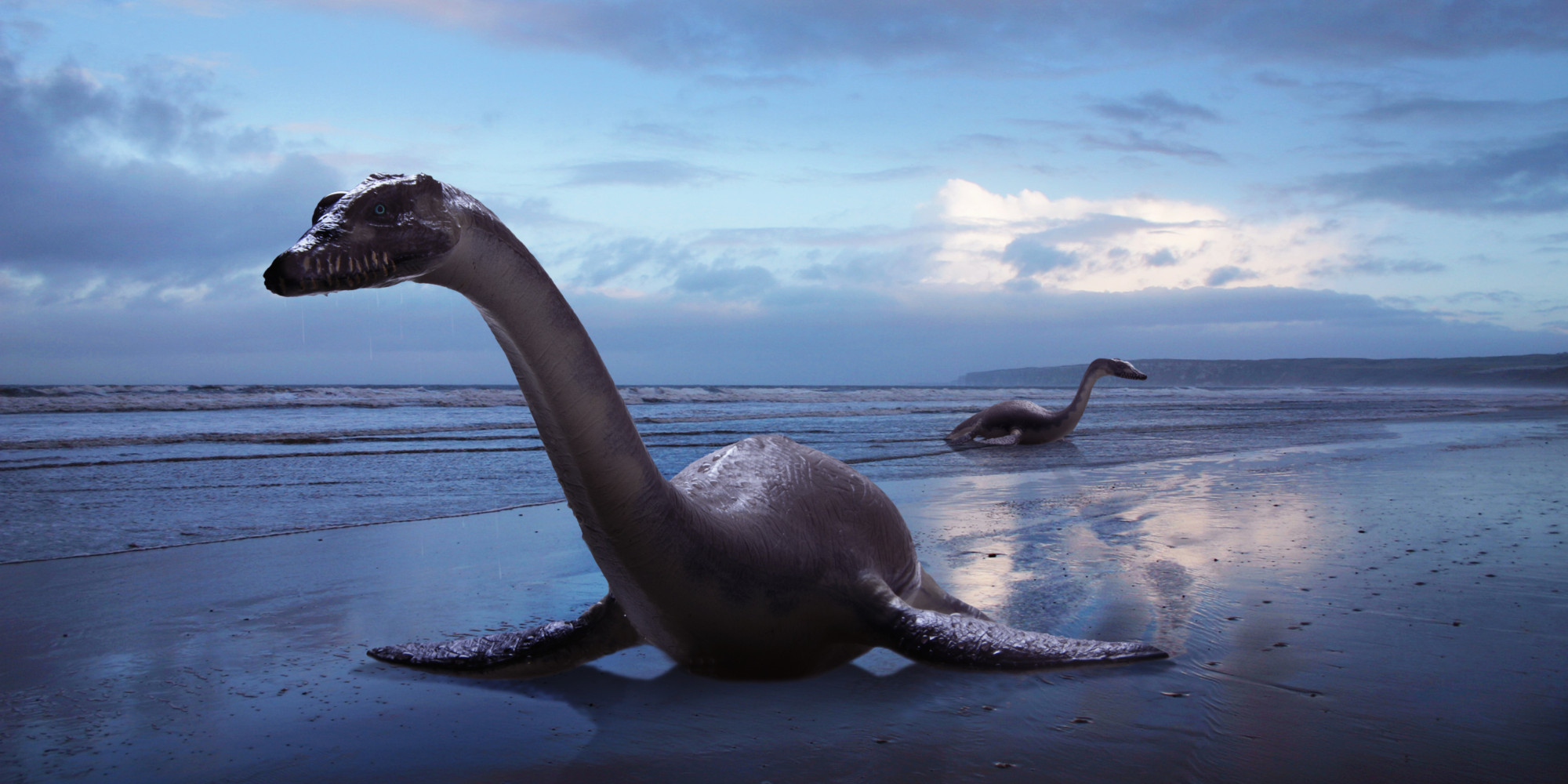 Dinosaurs Were In The Middle Of Warm Blooded And Cold