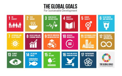 Large Scale Enquiry - Global Goals