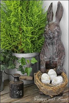 1000 Images About Spring Flings And Easter Things On