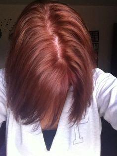 redken cherry cola formula dark brown hairs
