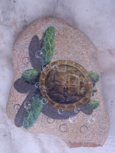 1000 Images About TURTLES On Pinterest Sea Turtles Baby Sea Turtles And Art Tiles
