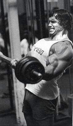 1000+ images about Body Building on Pinterest | Arnold ...