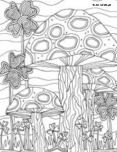 Creative Haven AMAZON ANIMALS A Coloring Book With A
