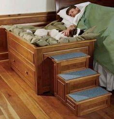 1000 Images About Dog Bed Dresser On Pinterest Dog Beds