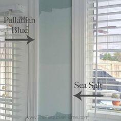Palladian Blue vs. S
