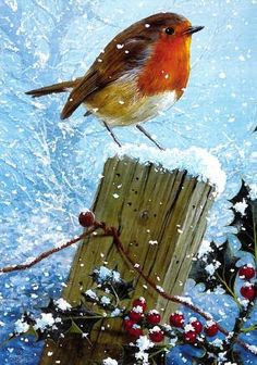 1000 Images About Winter On Pinterest Holly Tree
