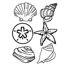 Shell Clip Art Black And White Sea Shell Clipart Shells