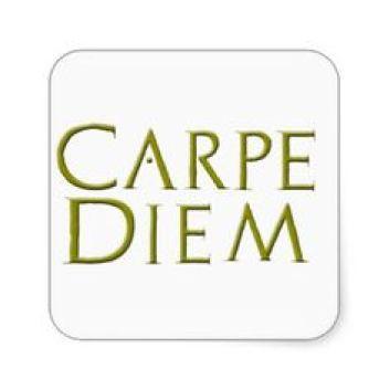 Image result for carpe diem latin script