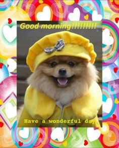 1000+ images about Wake Up Sleepy Head on Pinterest   Good ...