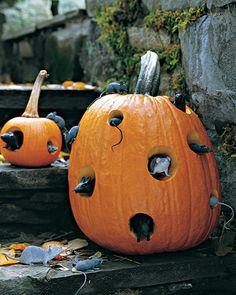 Mice & pumpkins ( ja