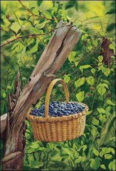 Bob Timberlake Strawberries Basket My Style Pinterest