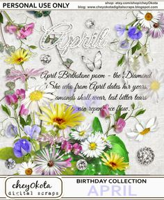 Draw Daisies To All Those Born In April The Flowers For