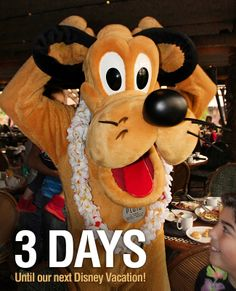 1000 Images About Disney Vacation Countdown On Pinterest