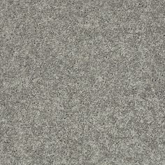 Shaw Home Foundations Carpet Lets See Carpet New Design