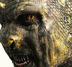 1000+ images about Lizard/reptile makeup on Pinterest ...