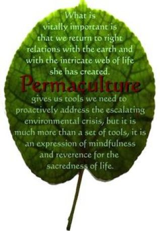 Image result for permaculture quote