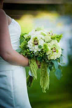 1000 Images About Bells Of Ireland Wedding Flowers On