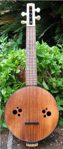 Fretless Mountain Banjo Plans