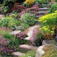 1000+ images about Landscaping: Slope on Pinterest ... on Uphill Backyard Ideas  id=92231