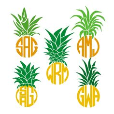 Download Pineapple Top Monogram Frame Cut Files SVG / pdf / EPS ...