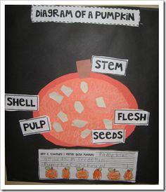 1000 images about Gr 12 pumpkins on Pinterest | Pumpkin