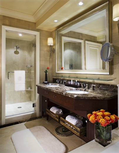 Master Bathroom Reno Inspiration