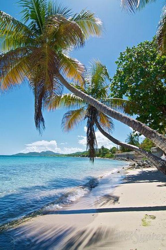 Esperanza, Vieques Island, Puerto Rico: