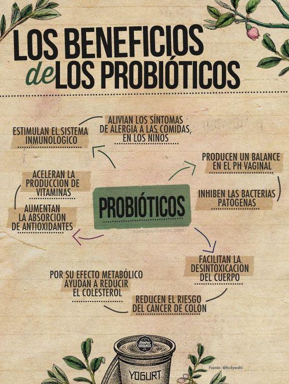 Beneficios de los probióticos