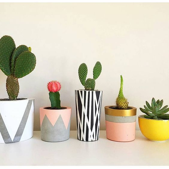 Concrete Succulent Holders: