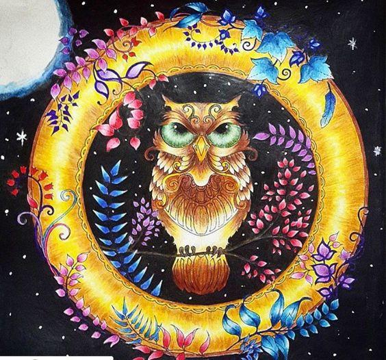 Owl Enchanted Forest Coruja Floresta Encantada Johanna
