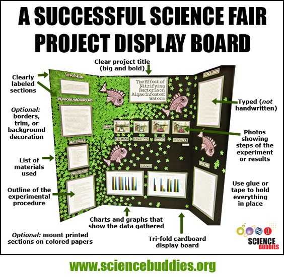 """""""Mastering the Project Display Board"""": Review project ..."""
