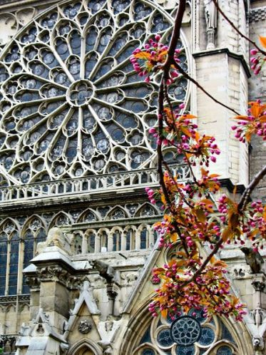 Rose Window, Cathedrale Notre-Dame, Paris: