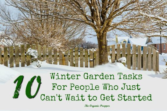 Even if there's snow on the ground, there are still some winter garden tasks you can do that will give you a jump start on spring.: