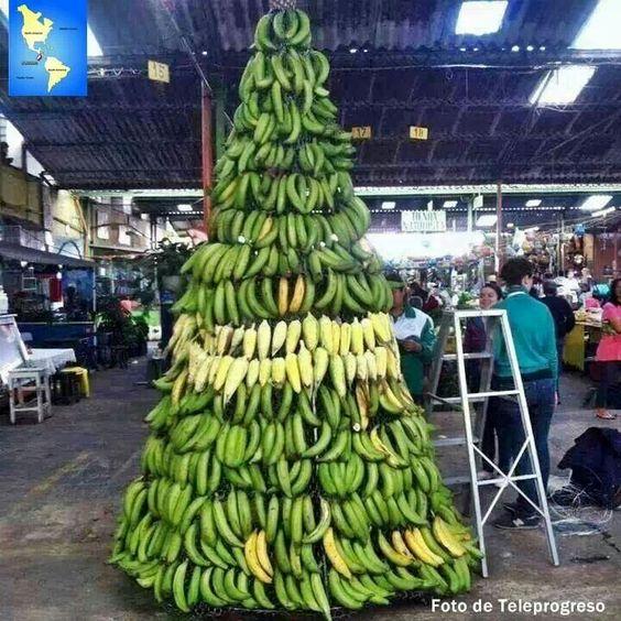 Honduras Bananas And Christmas On Pinterest